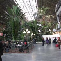 Atocha train station indoor botanical garden