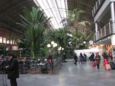 Amazing indoors: Atocha train station, Madrid